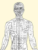 365 acupuncture points on the human body
