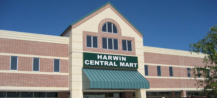 The new Harwin Central Mart, one of the many wholesale, low price stores along Harwin Dr.